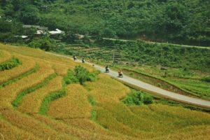 motorbike ride Vietnam